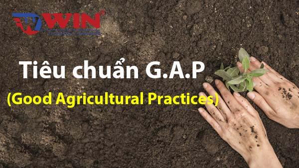 Tiêu chuẩn GAP (Good Agricultural Practices)